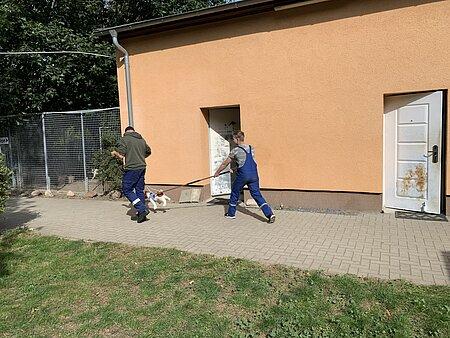 Übung mit Fangschlinge und Stoffhund.