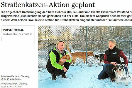 "19. Januar 2016 | MAZ | ""Straßenkatzen-Aktion geplant"""