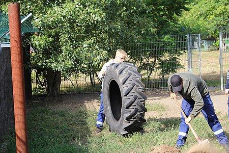 Eingraben der Reifen im Hundeauslauf.