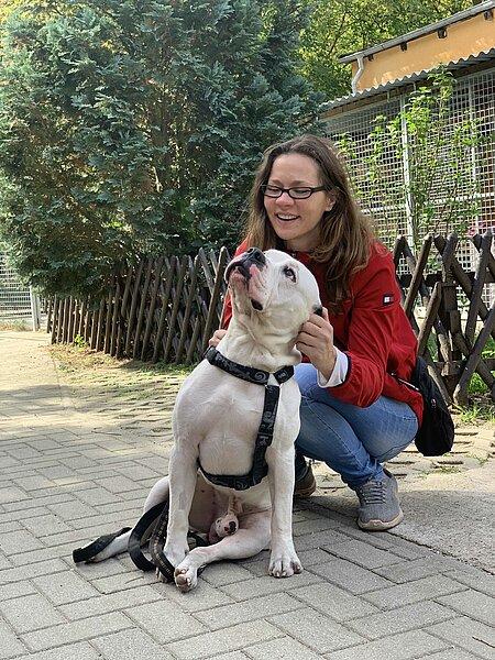 Öhrchen kraulen bei Hund Oskar