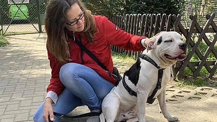 Zabello-Mitarbeitern und Tierheimhund Oskar