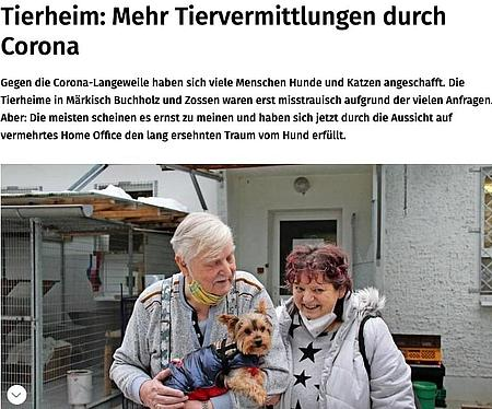 11. Januar 2021   Märkische Allgemeine   Tierheim: Mehr Tiervermittlungen durch Corona