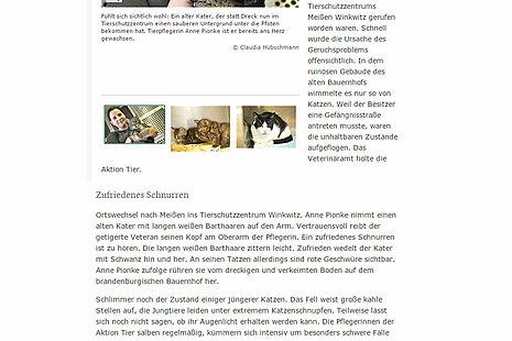 "SZ | 24. August 2017 | ""Gerettet in Meissen"""